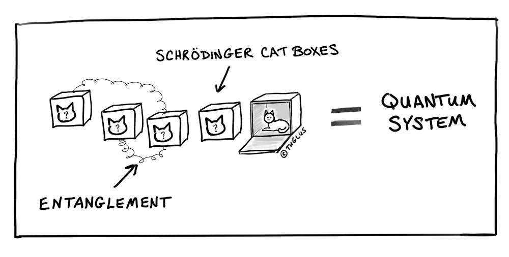 quantum computer cats